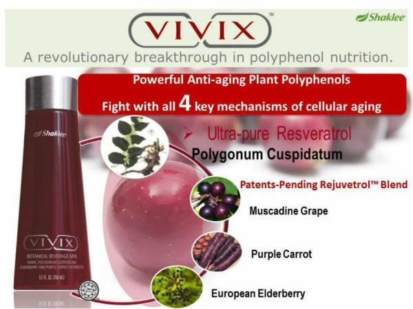 Vivix 2013